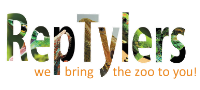 RepTylers – We Bring The Zoo To You | Brighton Reptile Parties